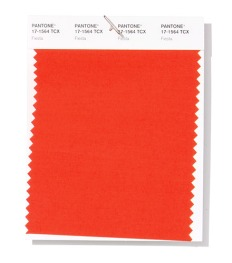 pantone-fashion-color-trend-report-new-york-spring-summer-2019-swatch-fiesta