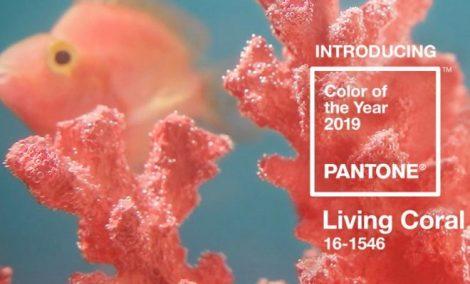 pantone-living-coral-660x400